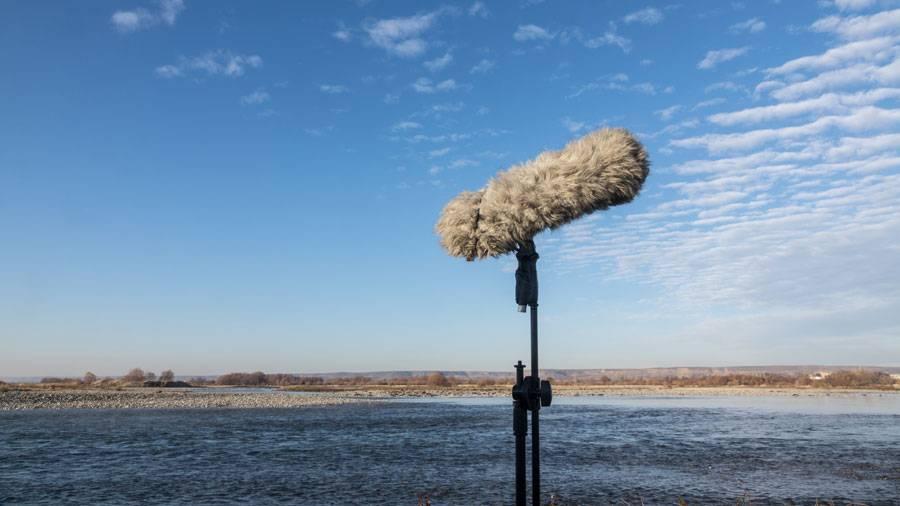 Microphone Furry Windshield