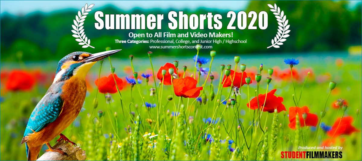 Summer Short 2020 Contest Film and Video Call for Entries
