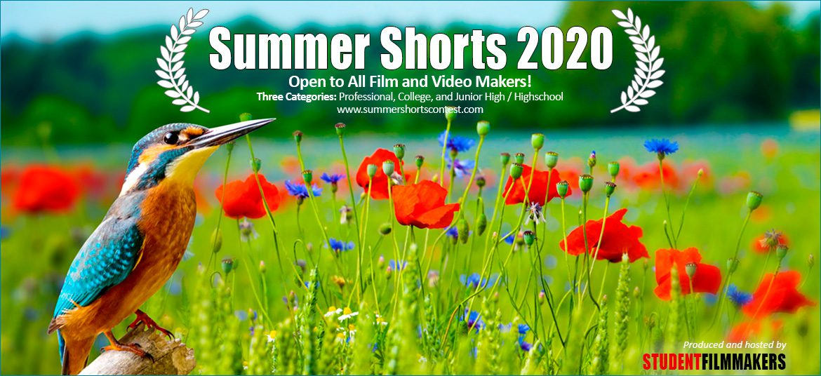 Summer Shorts 2020 Contest Film and Video Call for Entries