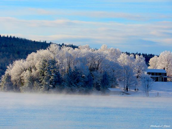 Winter Photo Contest: Frosty Forest