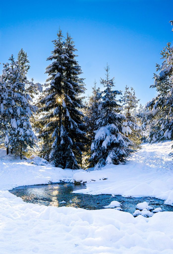 Winter Photo Contest: Water in the Snow