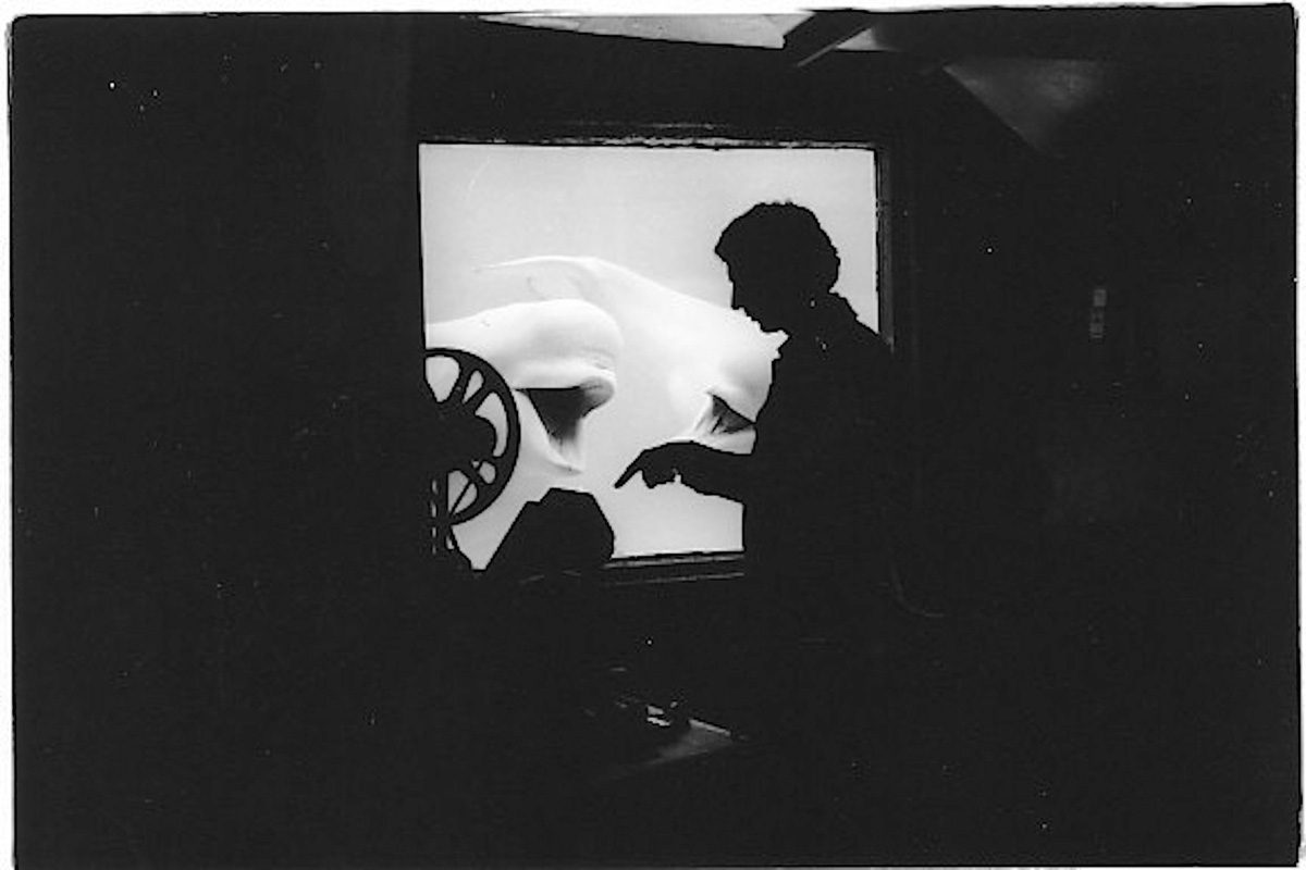 """""""Beluga Baby"""", NFB documentary, Tony Westman Director / Cinematographer.  Editing with help from the whales."""