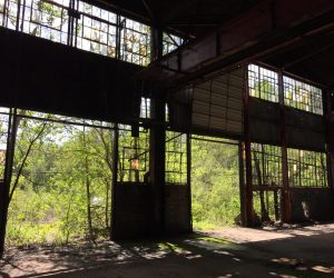 Skimmers - Location Photo 1