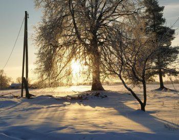 Winter Photo Contest - Latvia Winter