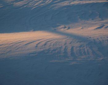 Winter Photo Contest - Snow Shadow